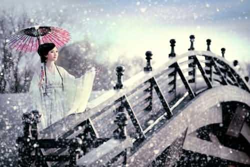江南烟雨,惆怅了一季落花